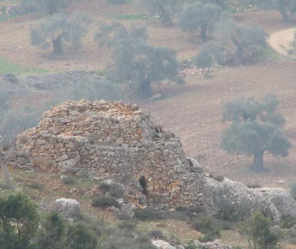 Bethel Israel: Watch Tower In A Grove Near Lower Beth Horan